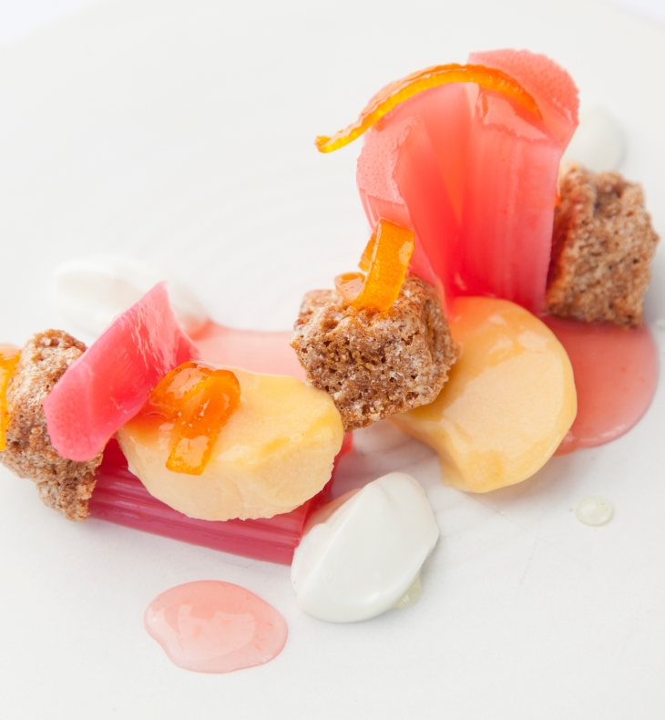 Rhubarb 180x195